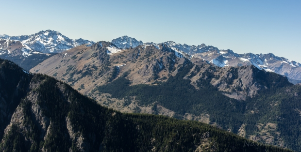 The peak on the left is Mt. Constance, 7756' (2,364 m). The tallest in the range but still majestic.