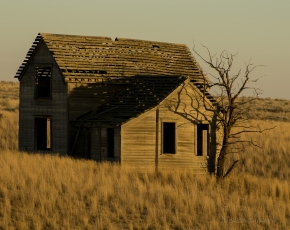 Captured this old abandoned farm house at sunset.