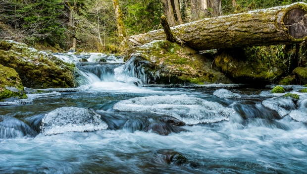 Quilcene River